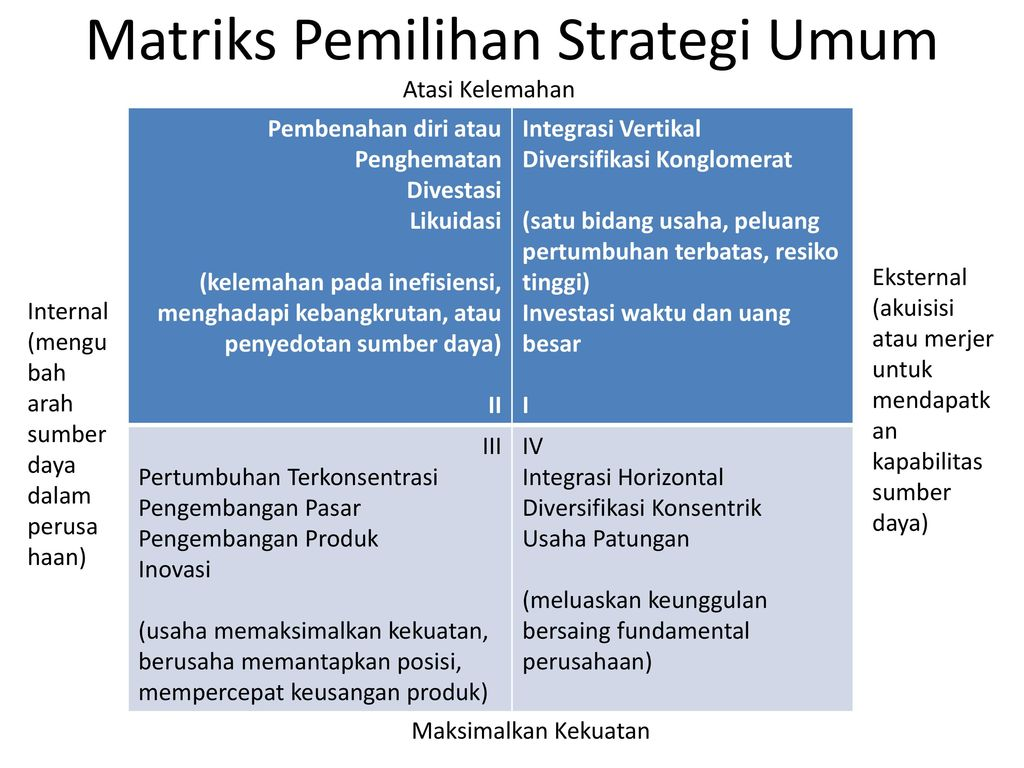strategi diversifikasi terbatas terkait