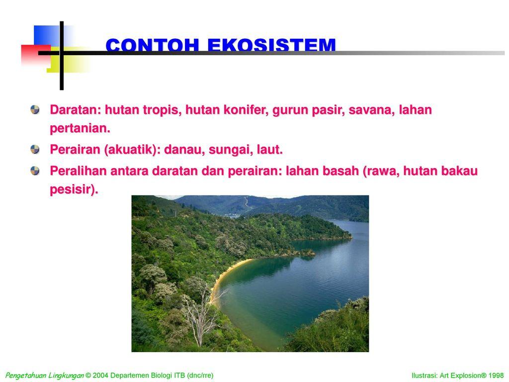 Ekosistem Sebagai Lingkungan Hidup Manusia Ppt Download