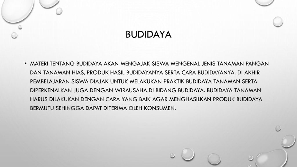 Contoh Wirausaha Di Bidang Budidaya Tanaman Pangan Berbagi Tanam