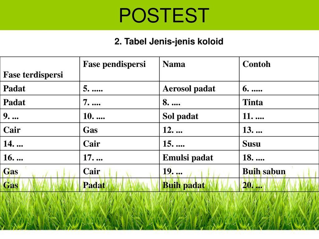 Sistem Koloid Indikator Contoh Pengertian Postets Ppt Download