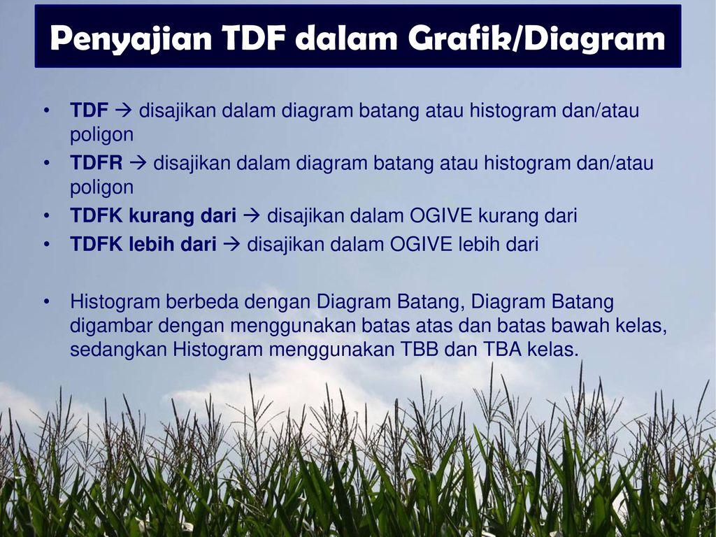 Penyajian data firmansyah skom ppt download penyajian tdf dalam grafikdiagram ccuart Gallery