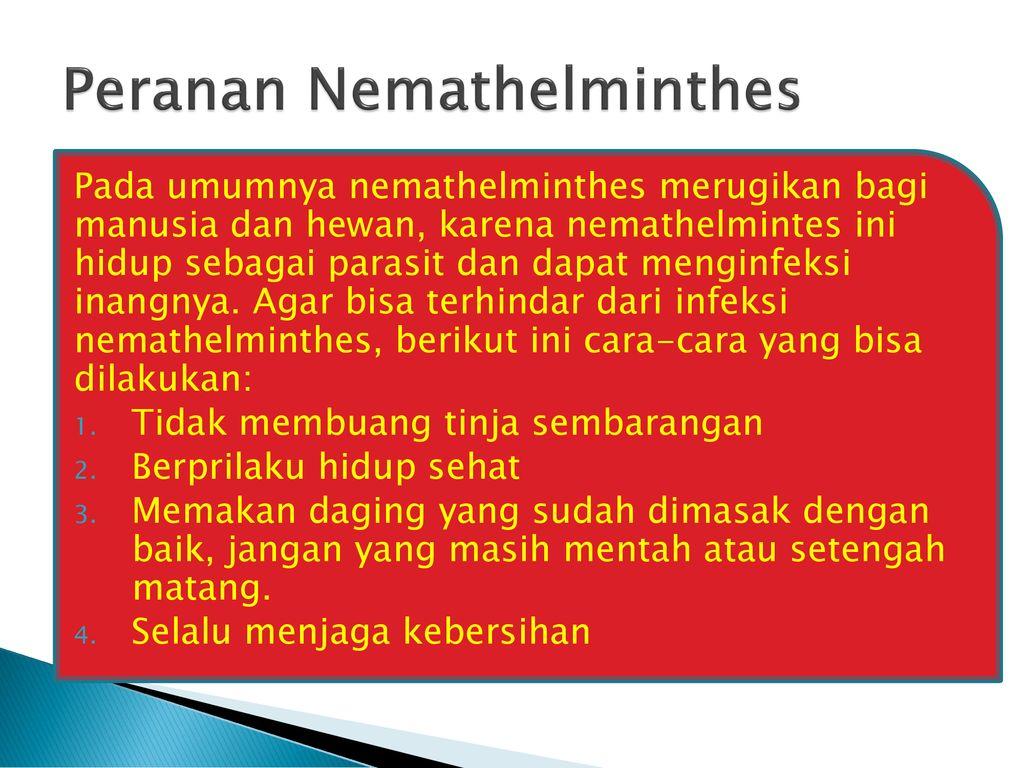 nemathelminthes peranan negatif tratamentul mâncărimilor paraziți ai pielii
