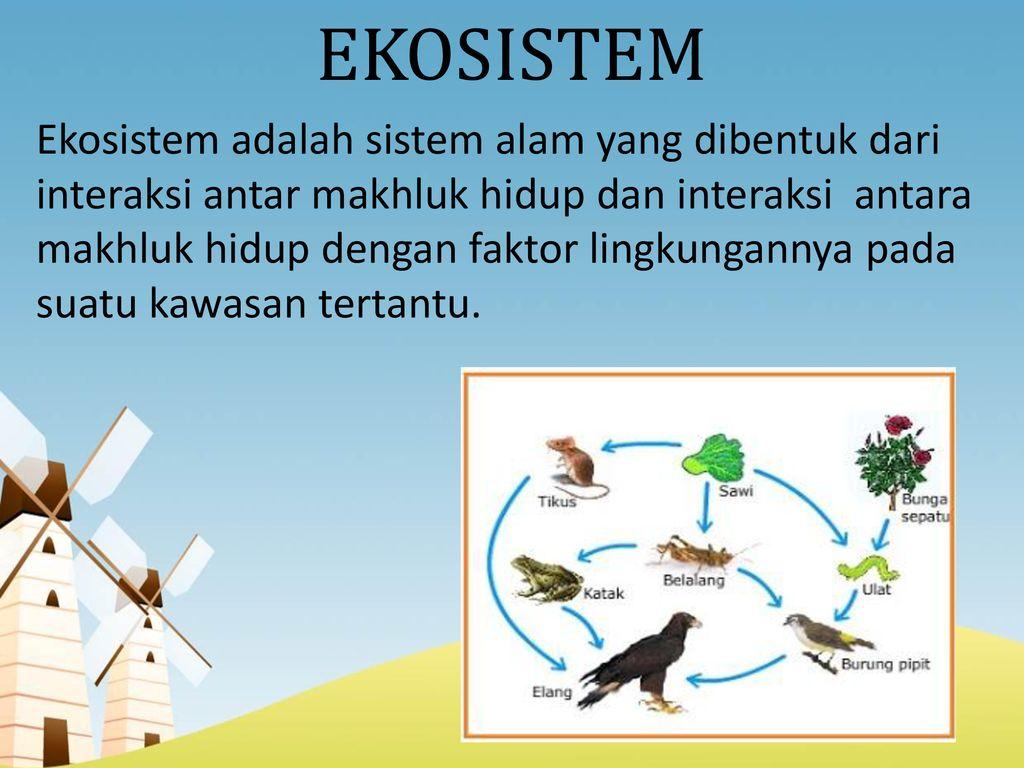 Ekosistem Anggota Kelompok 5 Leni Muktia Sari 17 Niki Novianti Ppt