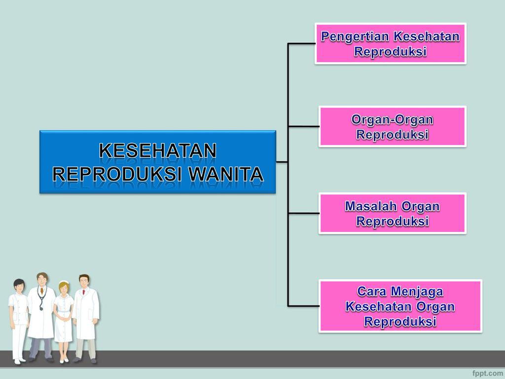 Kesehatan Reproduksi Wanita Ppt Download
