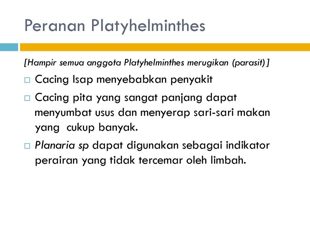 peranan filum nemathelminthes dalam kehidupan)