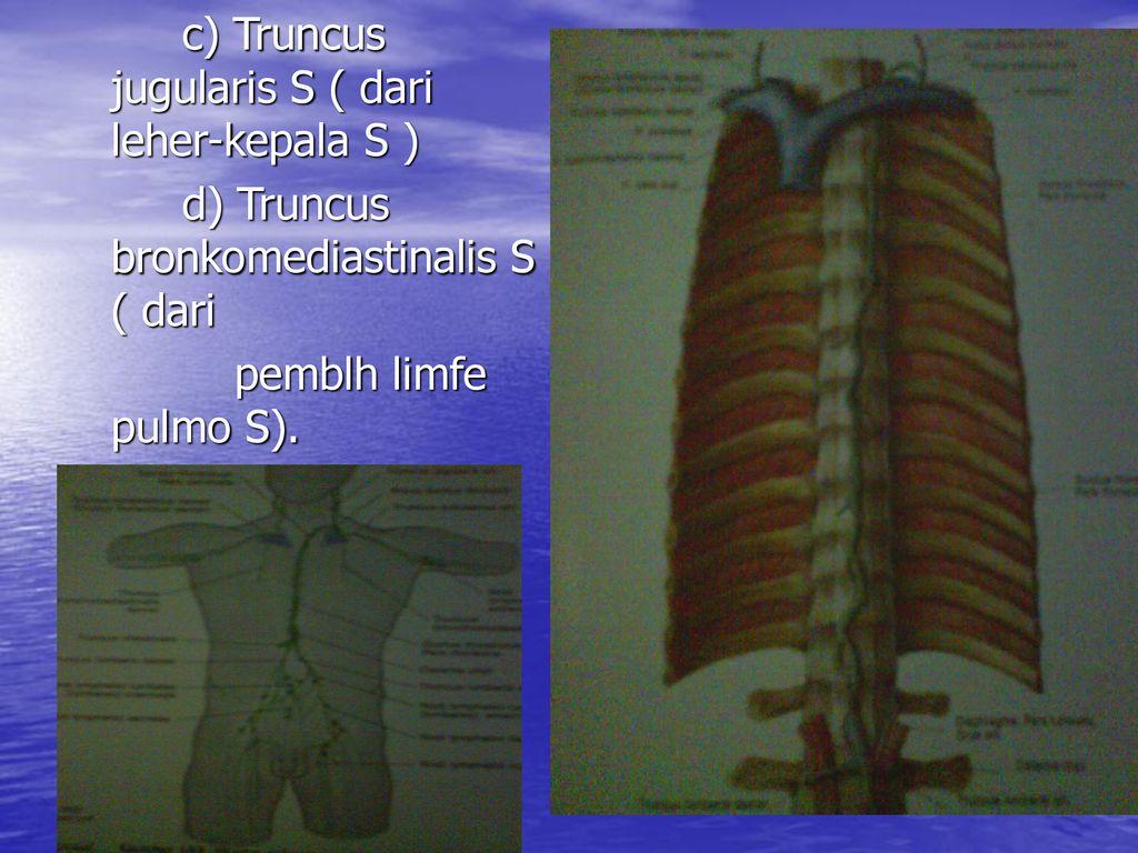 segíthet-e a fogyás a pulmonalis hipertóniában