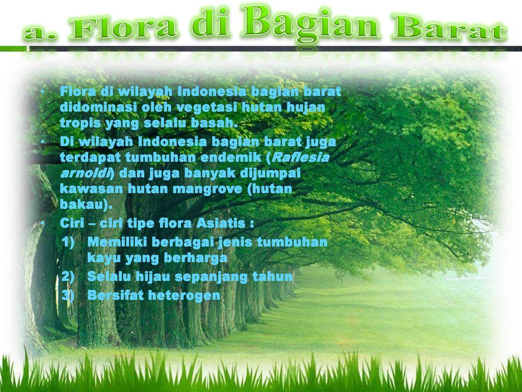 B Persebaran Flora Dan Fauna Ppt Download