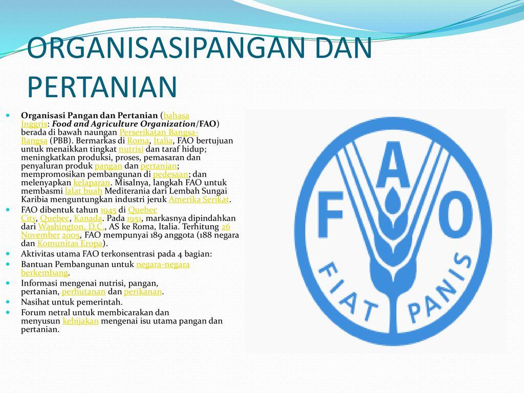 Organisasi Pbb Persyrikatan Bangsa Bangsa Ppt Download
