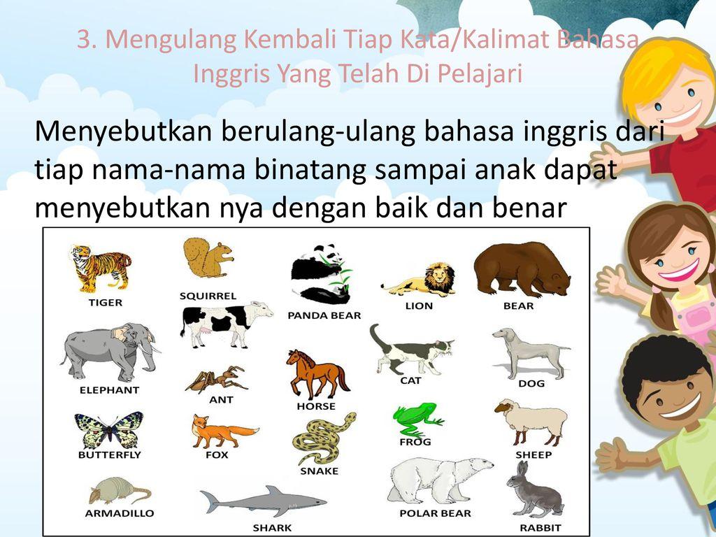 57 Koleksi Gambar Binatang Untuk Pembelajaran Anak Terbaik