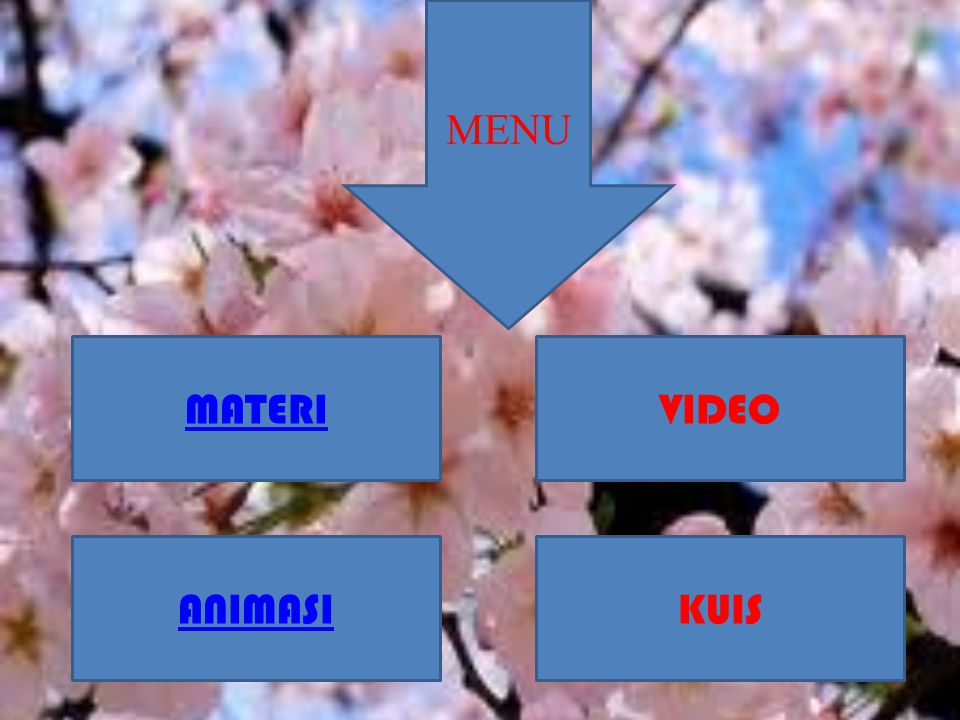 MENU MATERI VIDEO ANIMASI KUIS