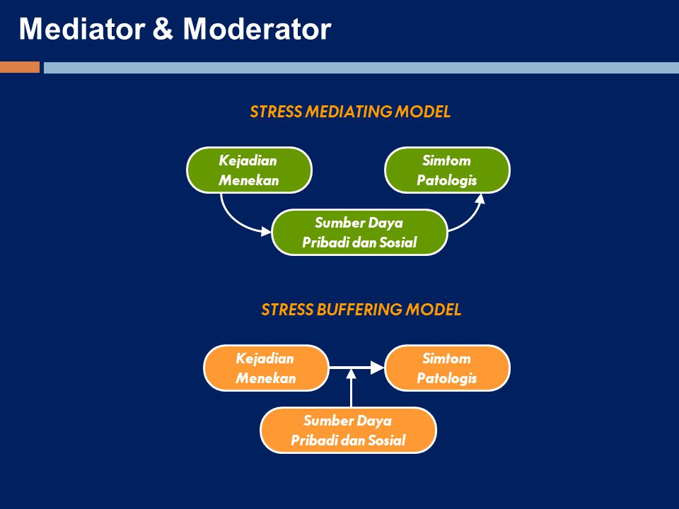 STRESS MEDIATING MODEL