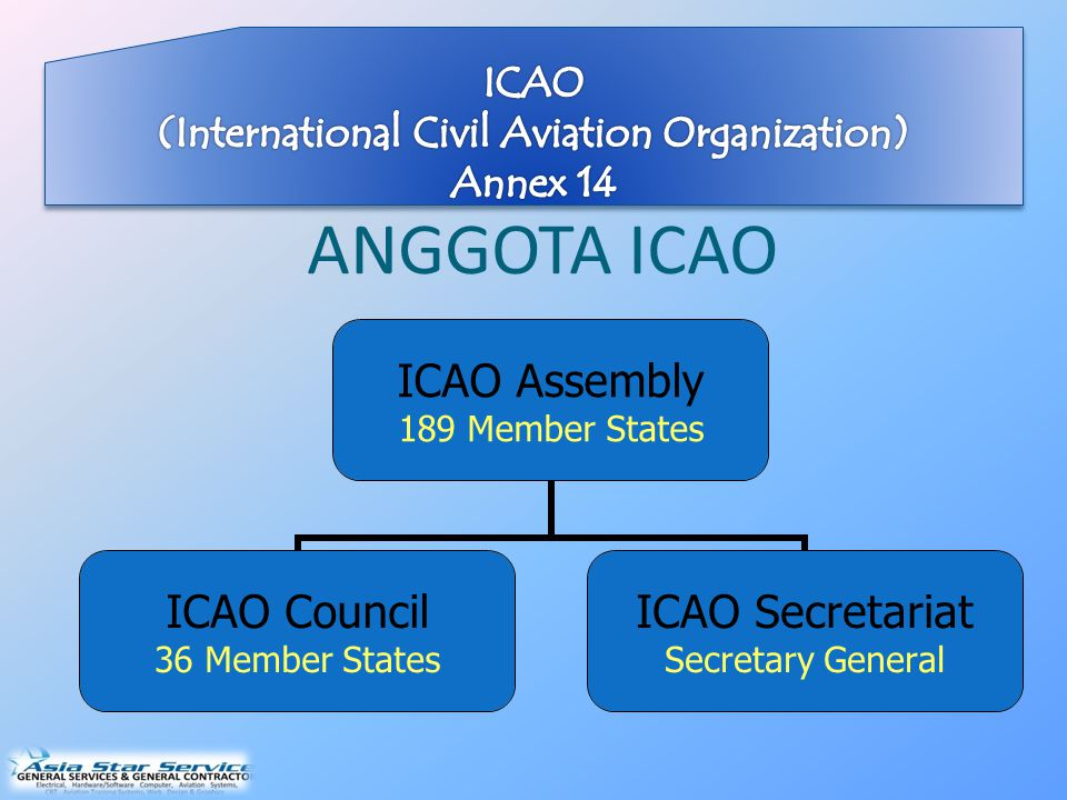 (International Civil Aviation Organization) Annex 14