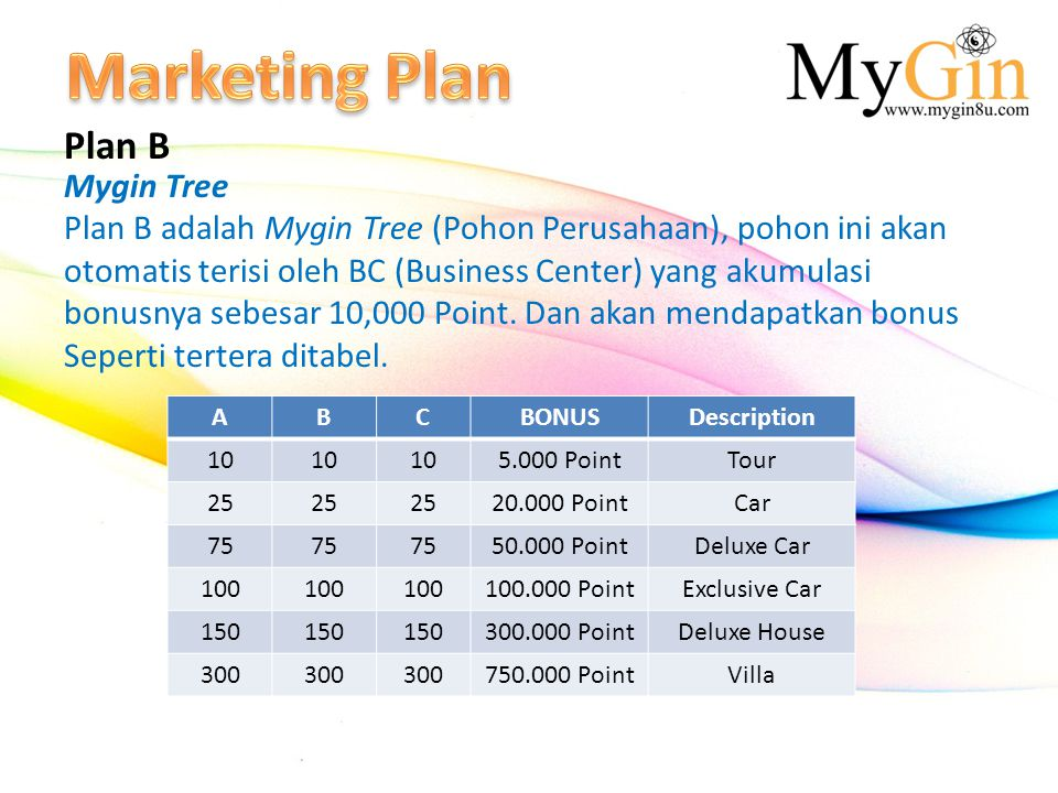 Marketing Plan Plan B Mygin Tree