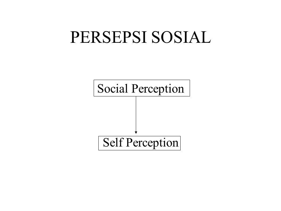 PERSEPSI SOSIAL Social Perception Self Perception
