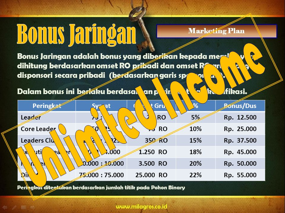 Bonus Jaringan Unlimited Income