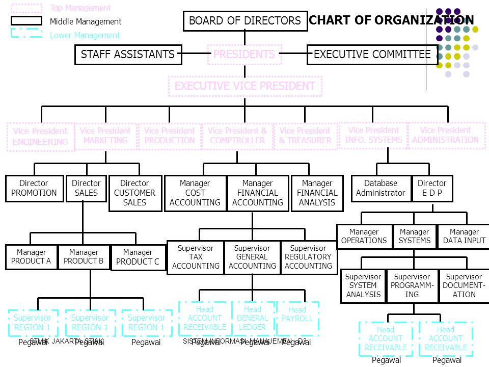 CHART OF ORGANIZATION BOARD OF DIRECTORS STAFF ASSISTANTS PRESIDENTS