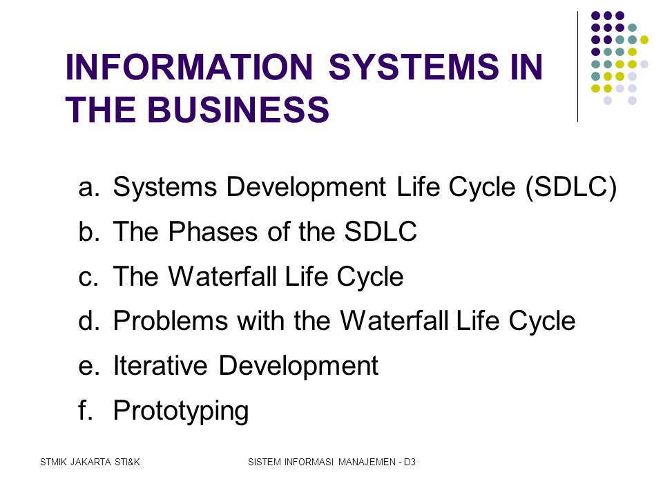 INFORMATION SYSTEMS IN THE BUSINESS