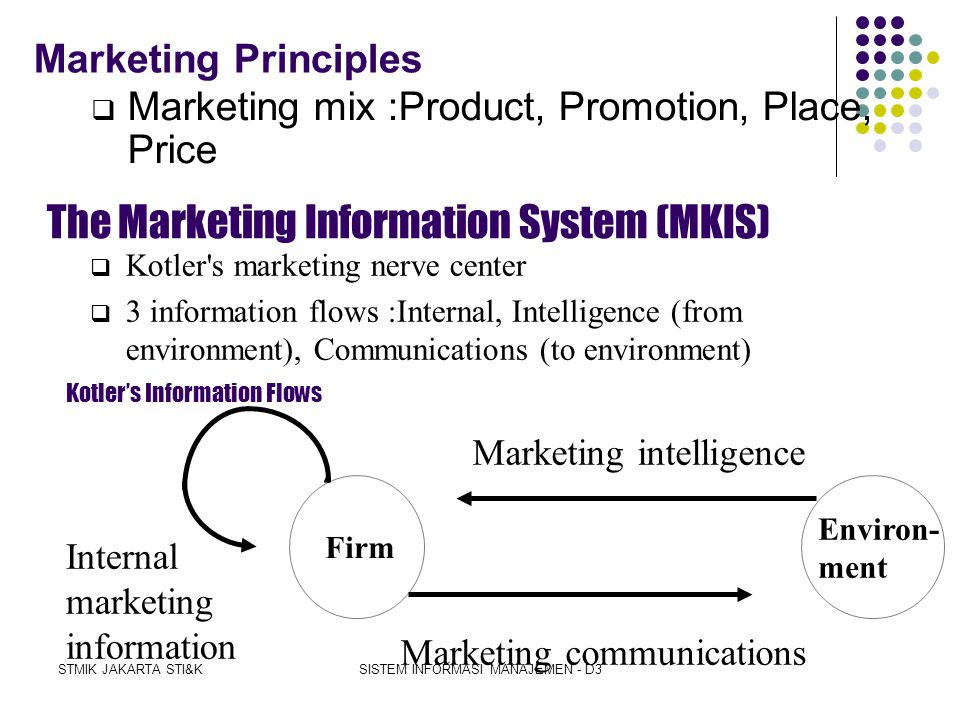 The Marketing Information System (MKIS)