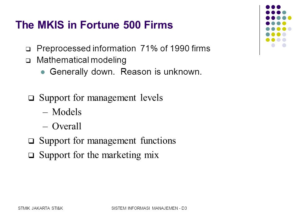 The MKIS in Fortune 500 Firms