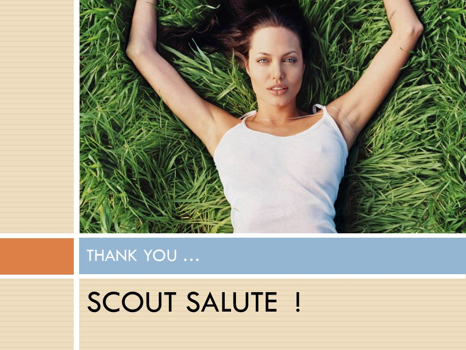 THANK YOU … SCOUT SALUTE !
