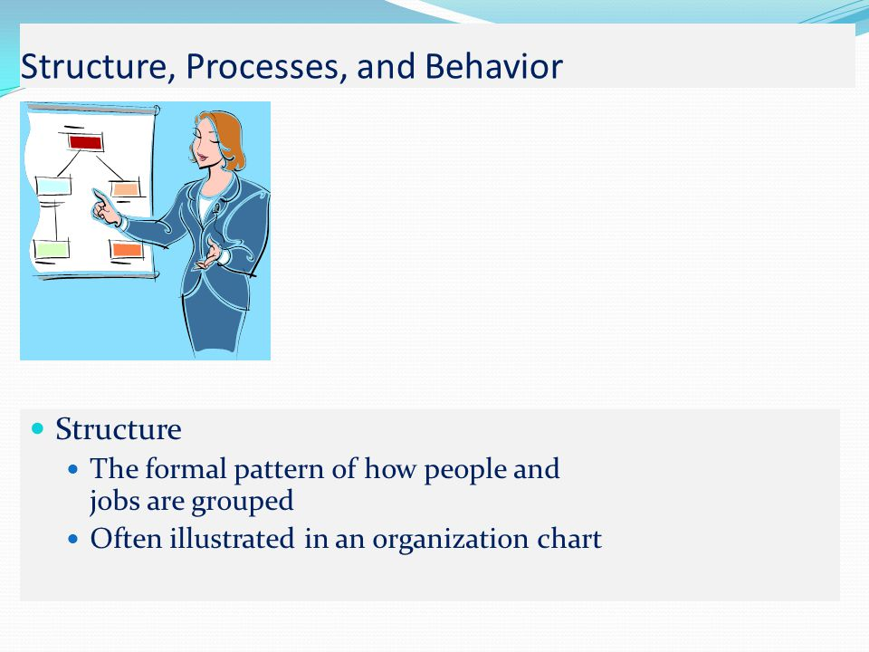 Structure, Processes, and Behavior