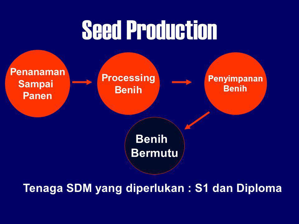 Seed Production Benih Bermutu