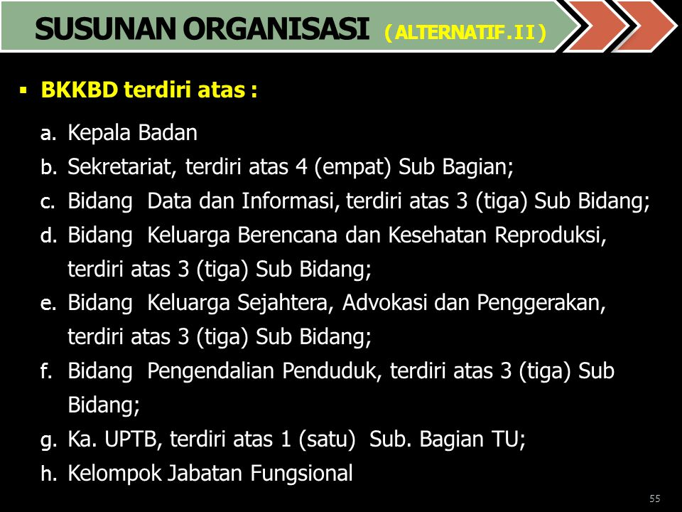 SUSUNAN ORGANISASI ( ALTERNATIF . I I )
