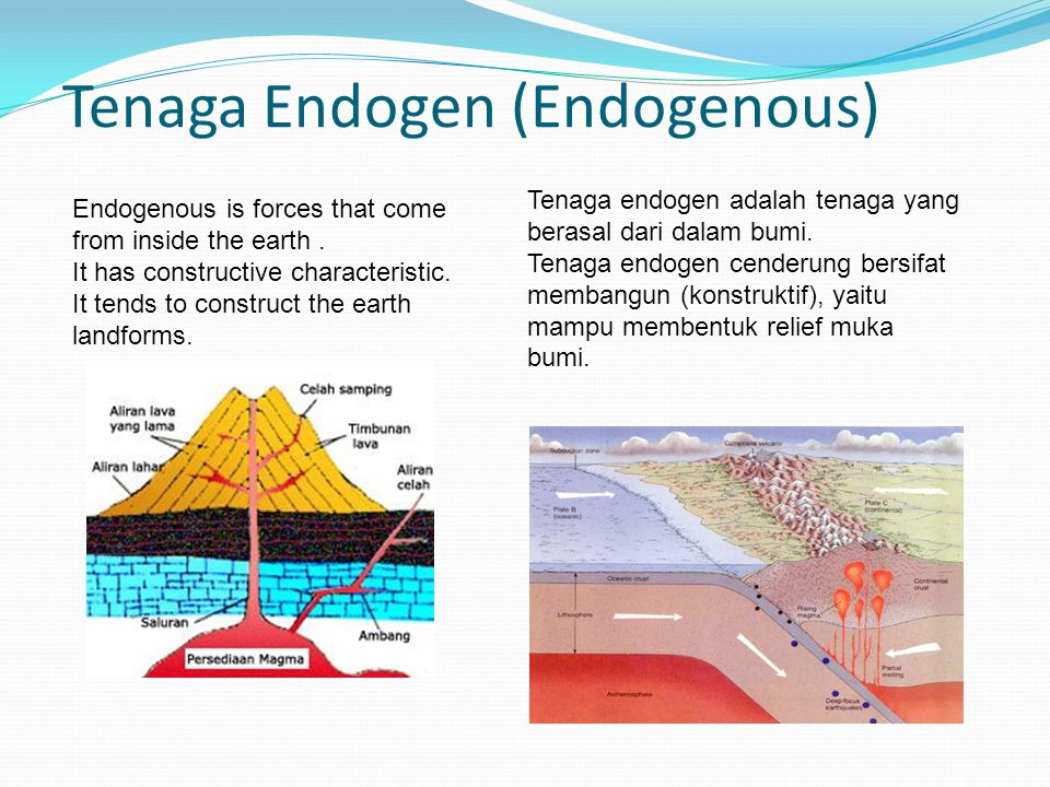 Tenaga Endogen (Endogenous)