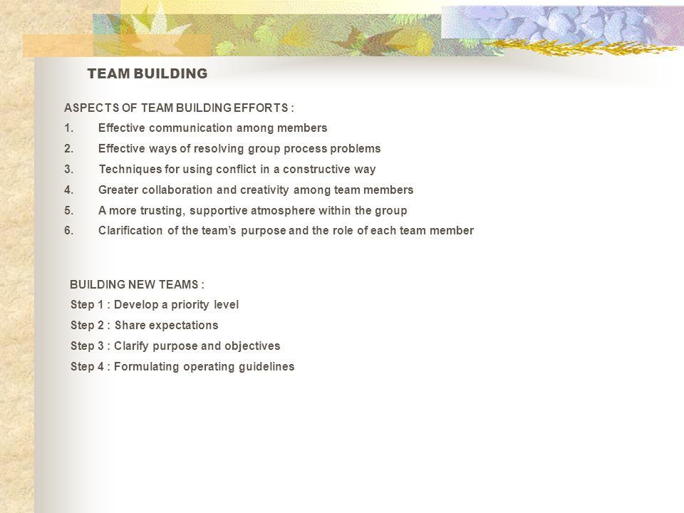 TEAM BUILDING ASPECTS OF TEAM BUILDING EFFORTS :
