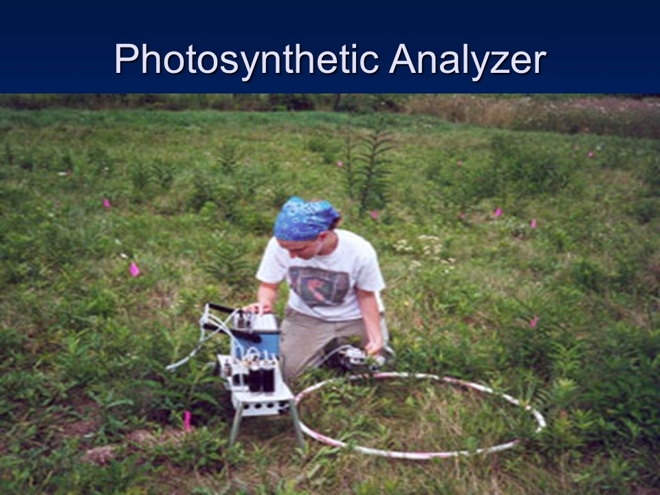 Photosynthetic Analyzer