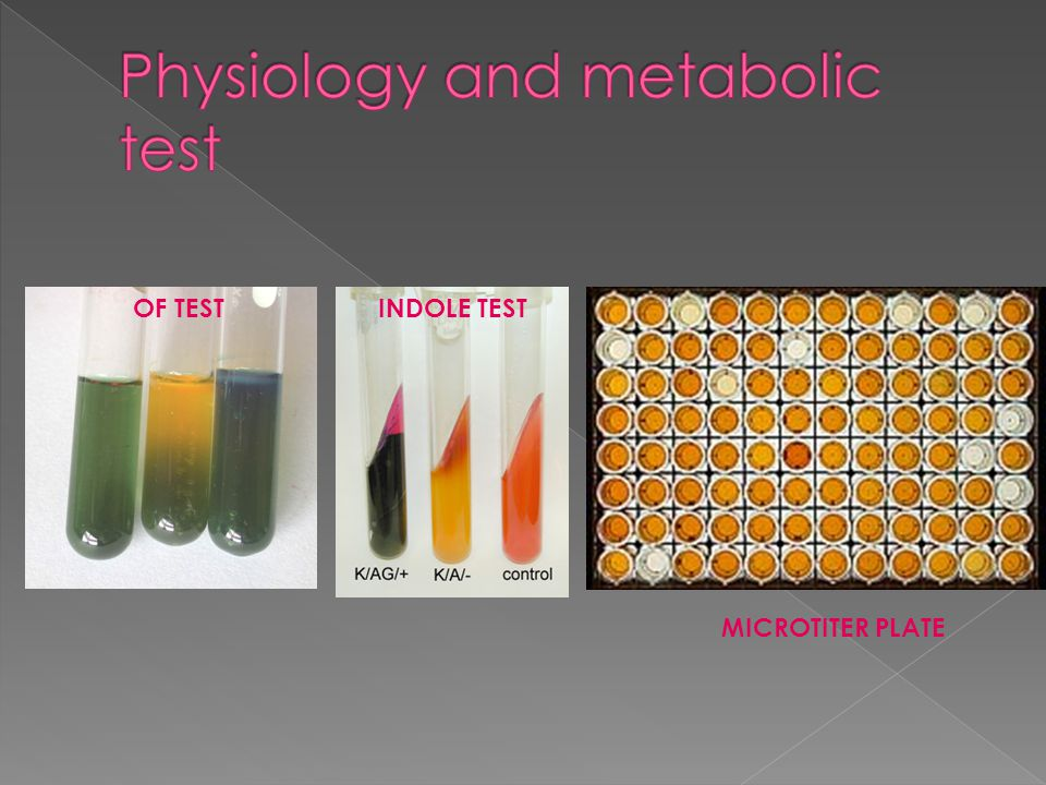 Physiology and metabolic test