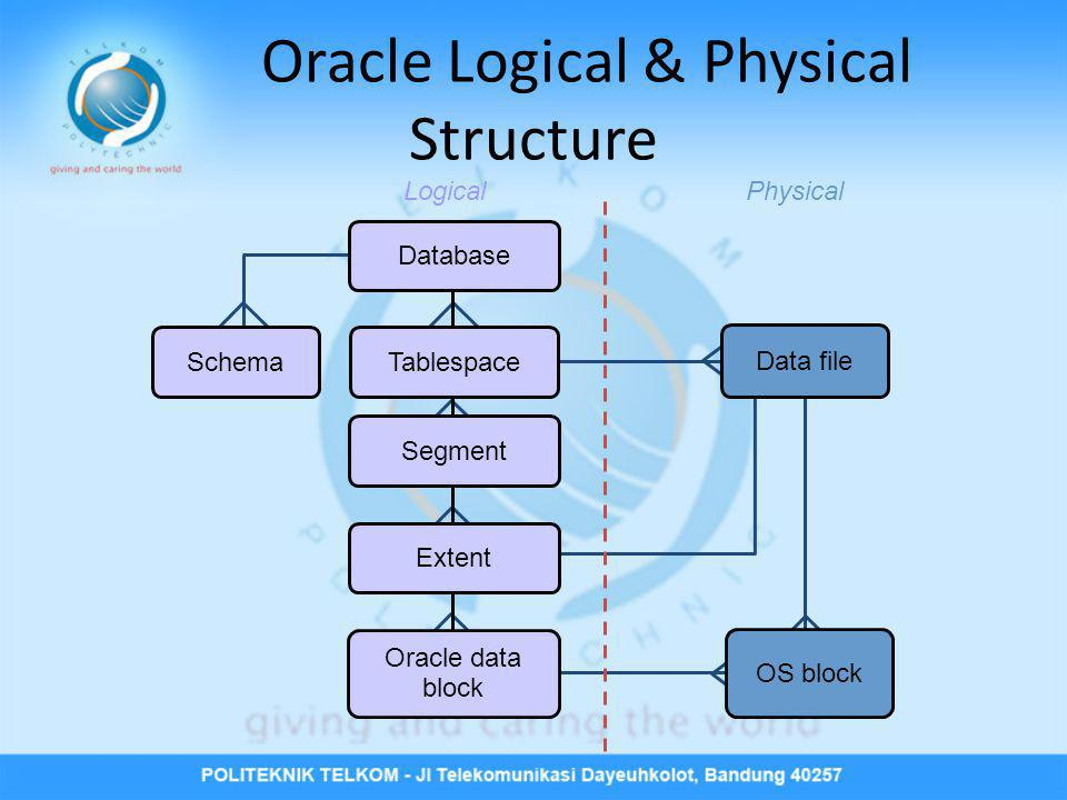 Oracle Logical & Physical Structure