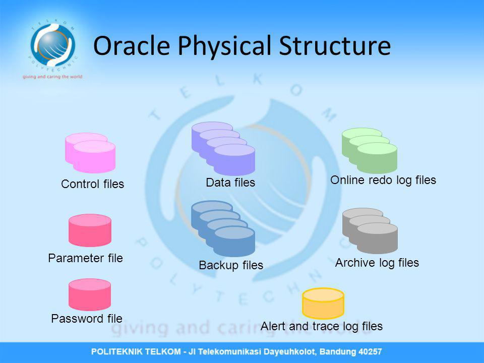 Oracle Physical Structure