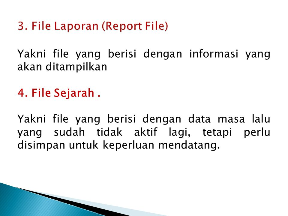 3. File Laporan (Report File)