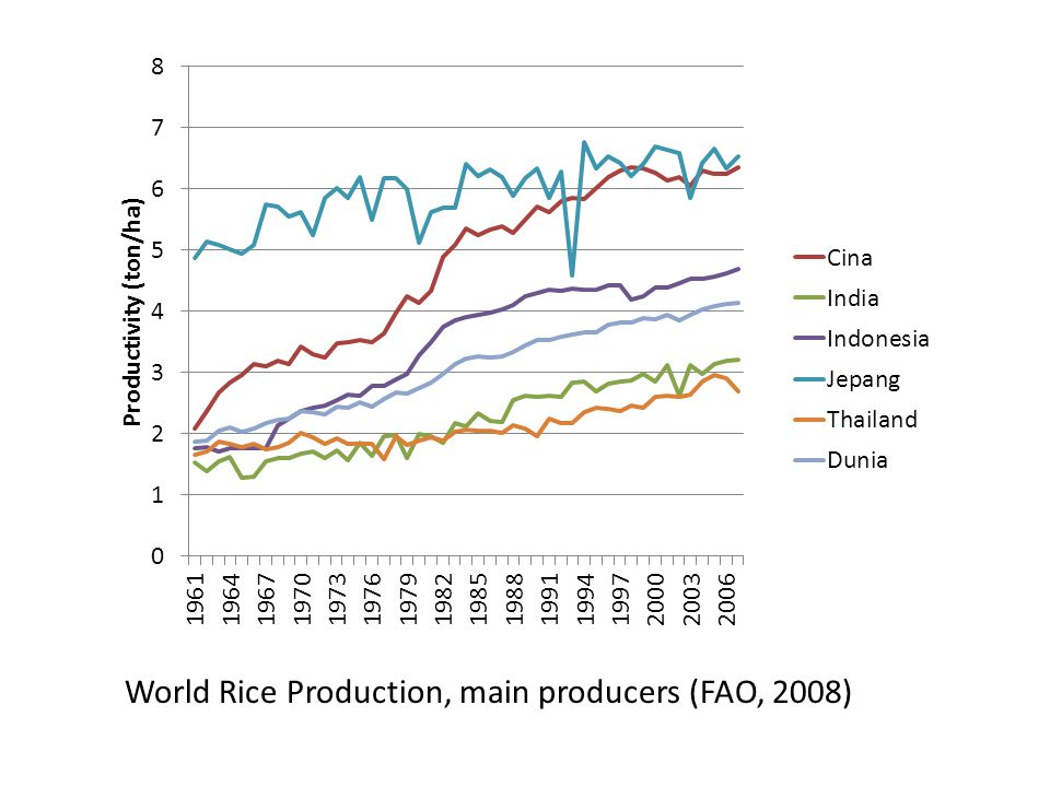 World Rice Production, main producers (FAO, 2008)