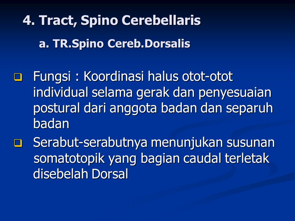 4. Tract, Spino Cerebellaris