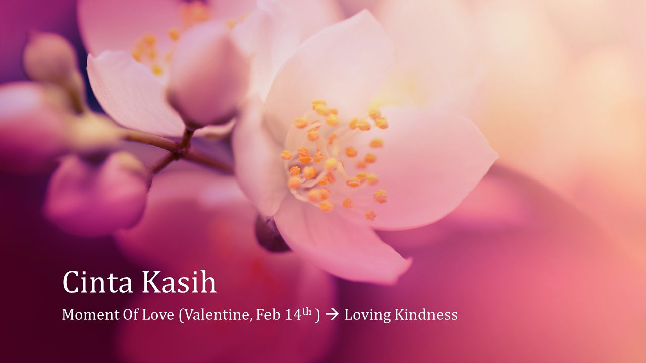 Moment Of Love (Valentine, Feb 14th )  Loving Kindness
