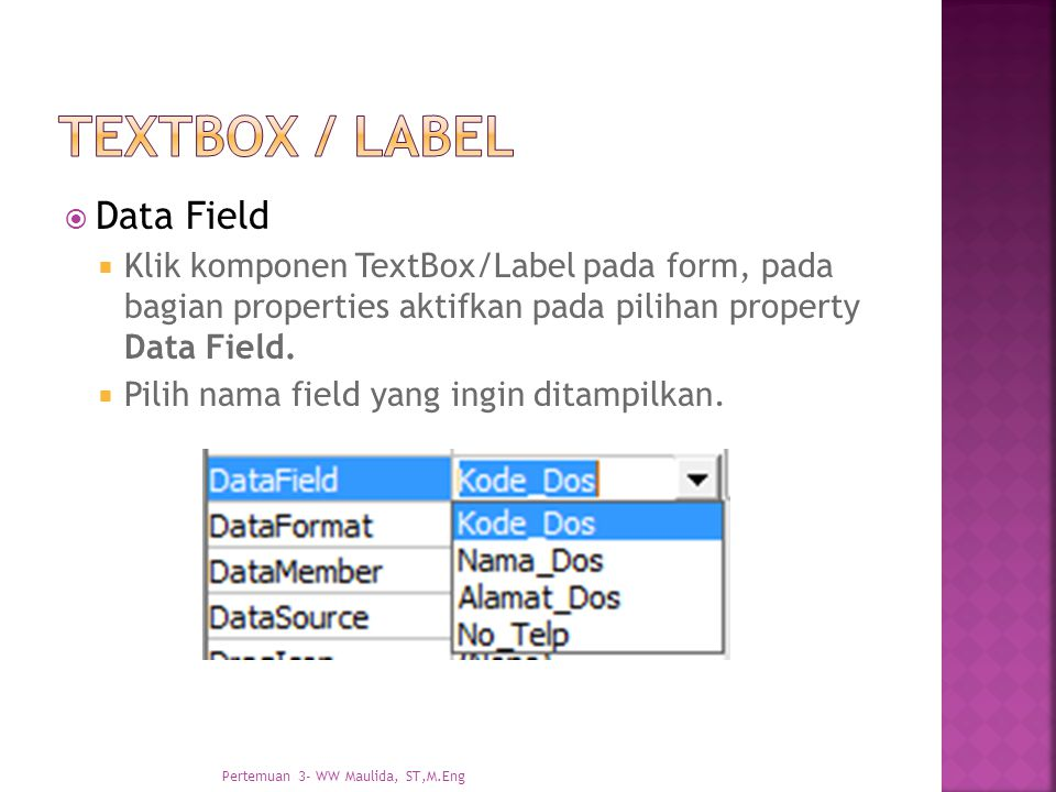 textbox / label Data Field