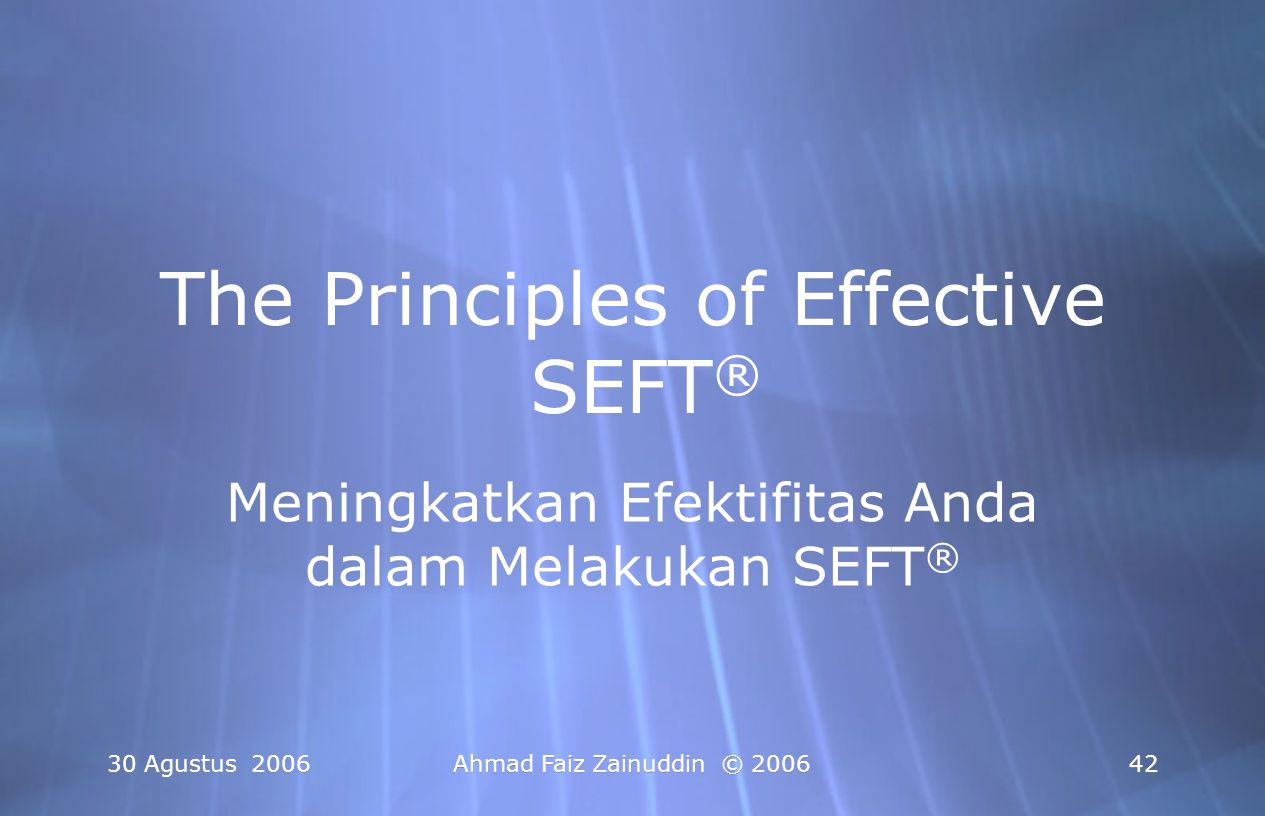 The Principles of Effective SEFT®