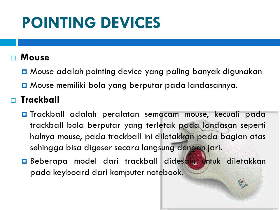 POINTING DEVICES Mouse Trackball