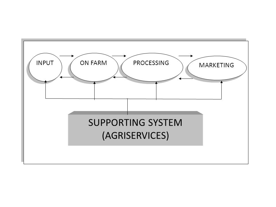 INPUT ON FARM PROCESSING MARKETING SUPPORTING SYSTEM (AGRISERVICES)
