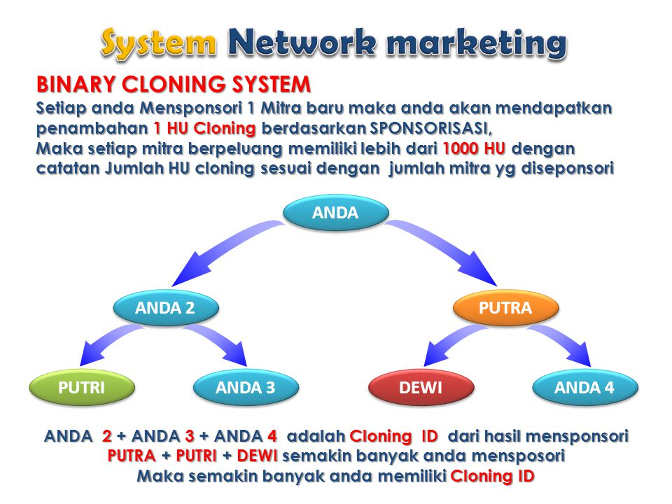 System Network marketing