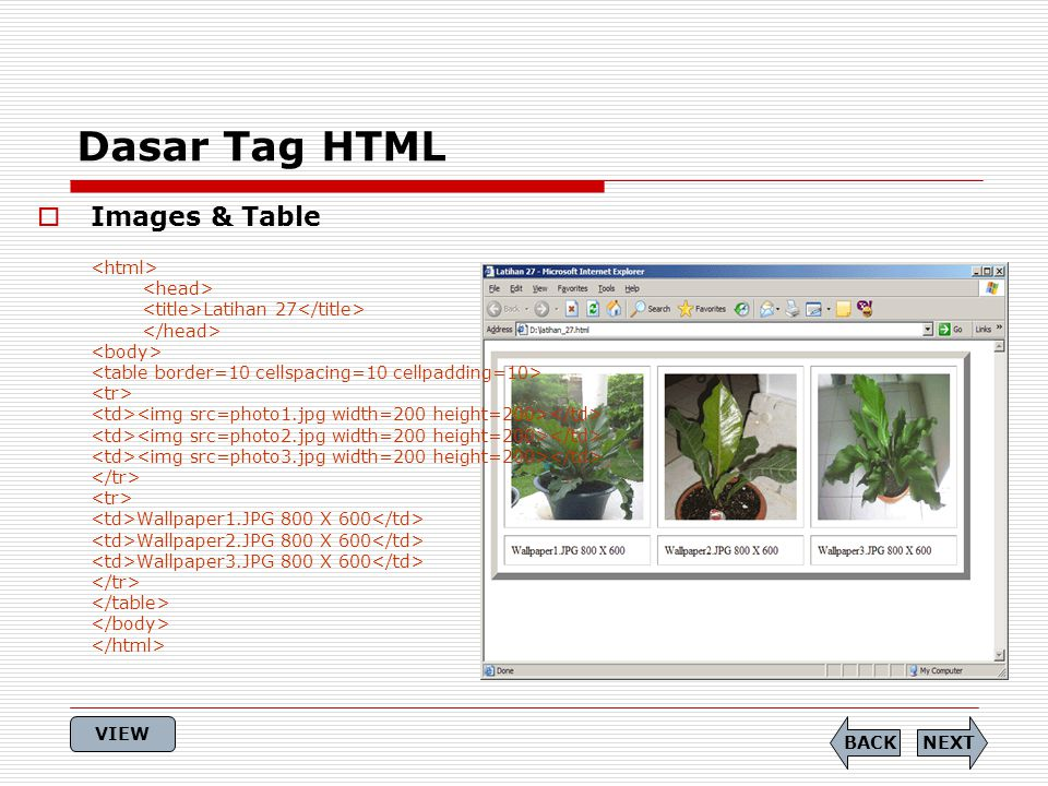 Dasar Tag HTML Images & Table <html> <head>