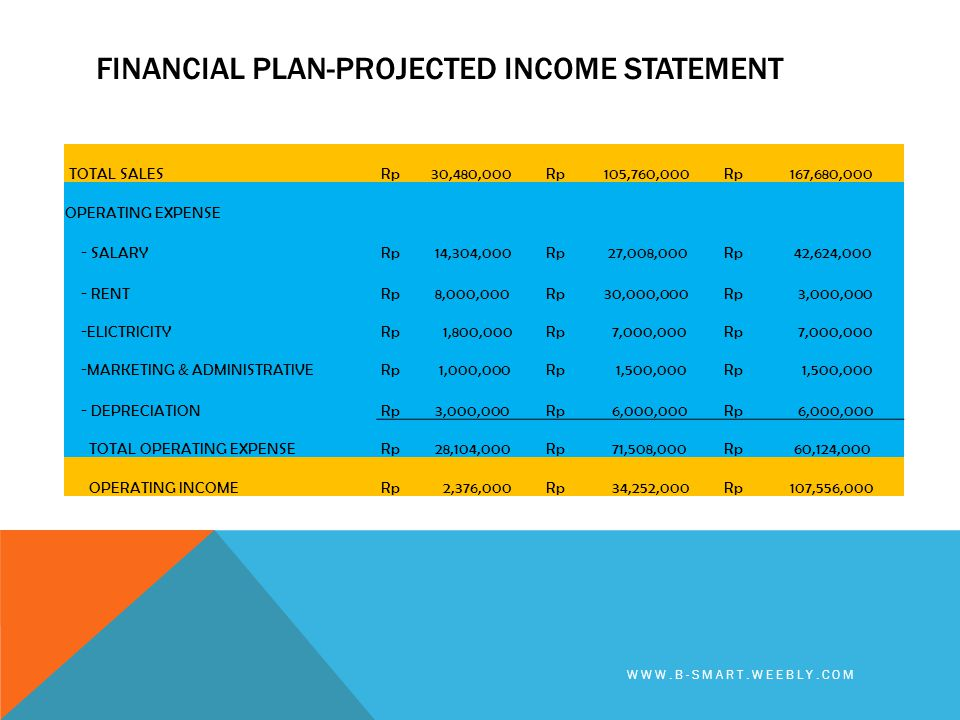 Financial plan-PROJECTED income statement