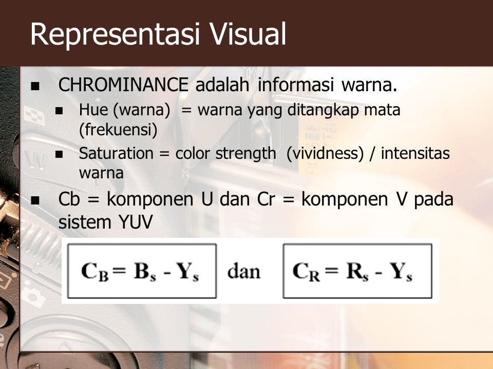 Representasi Visual CHROMINANCE adalah informasi warna.