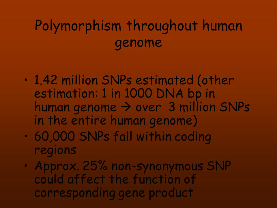 Polymorphism throughout human genome