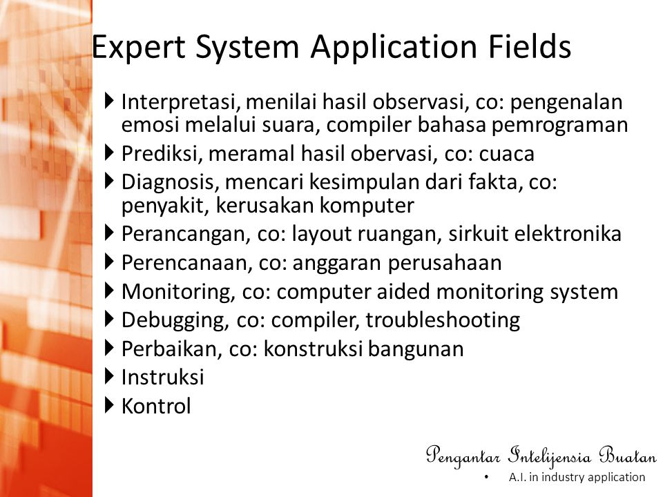 Expert System Application Fields