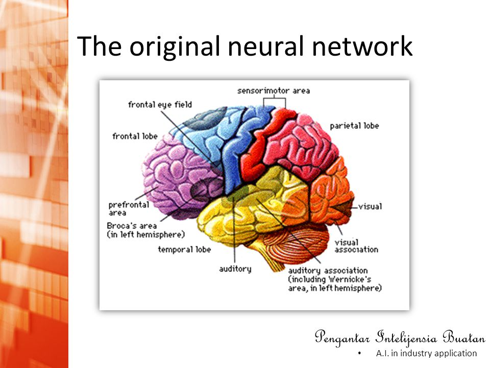 The original neural network
