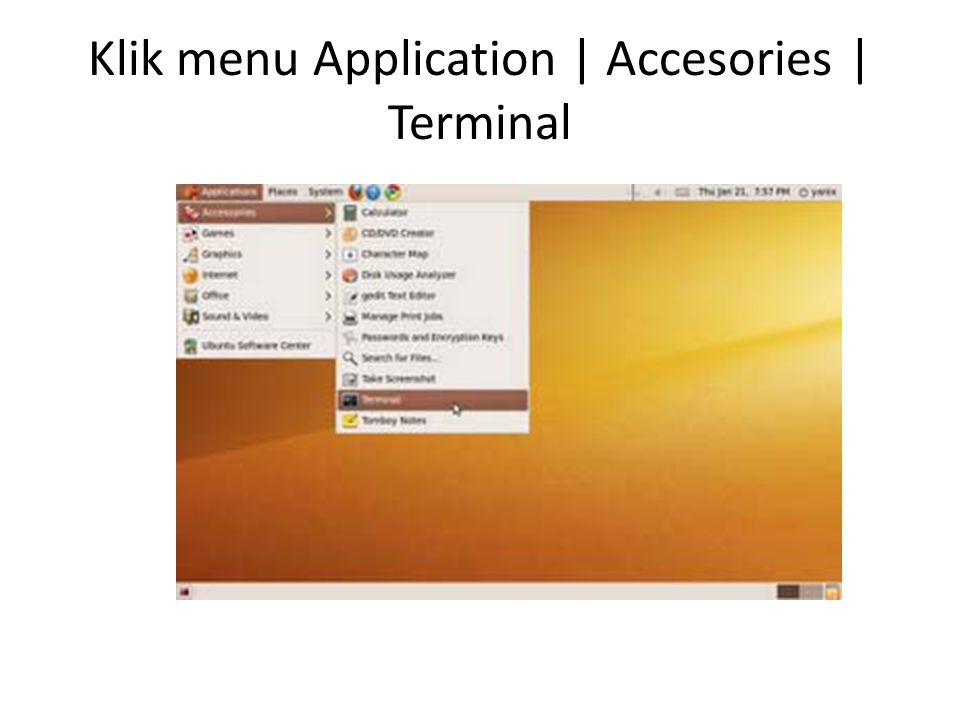 Klik menu Application | Accesories | Terminal