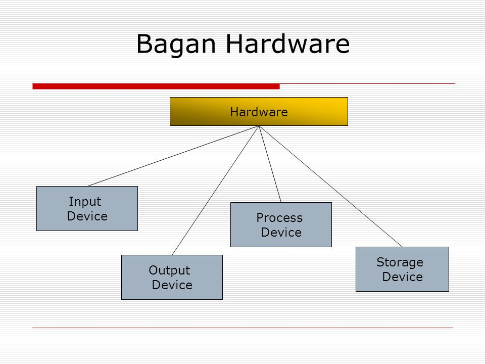 Bagan Hardware Hardware Input Device Process Device Storage Output